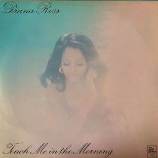 Diana Ross ‎- Touch Me In The Morning (LP) (VG+/VG)